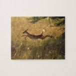 Ciervos que saltan a través de campo rompecabeza con fotos