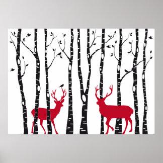 Ciervos rojos en bosque del árbol de abedul poster