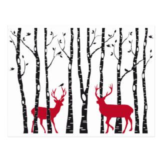 Ciervos rojos en bosque del árbol de abedul postales