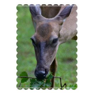 Ciervos Snacking Invitaciones Personalizada