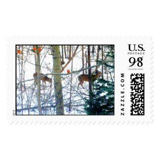 Ciervos Stamps* real de la vidita Estampillas