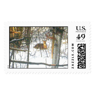 Ciervos Stamps* real de la vidita Sello Postal