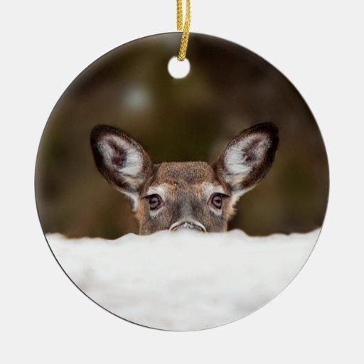 Ciervos tímidos - ornamento ornamento de reyes magos