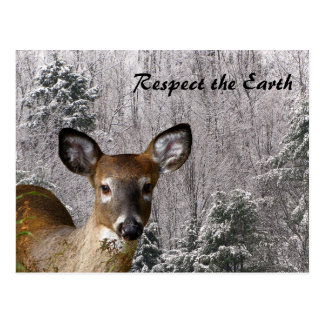 Ciervos y colinas escarchadas postal