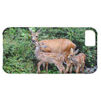 Ciervos y familia gemela del animal de los funda para iPhone 5C