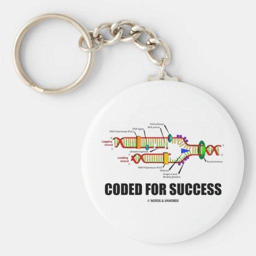 Cifrado para el éxito (réplica de la DNA) Llaveros