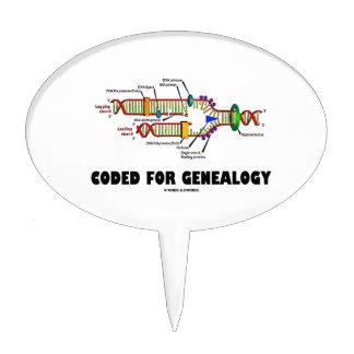 Cifrado para la genealogía (réplica de la DNA) Figura De Tarta
