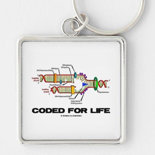 Cifrado para la vida (réplica de la DNA) Llavero Cuadrado Plateado