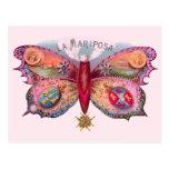 Cigarro de la mariposa del vintage postales