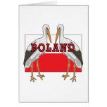Cigüeña blanca polaca Polonia Tarjetas
