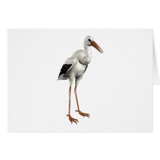 Cigüeña blanca tarjeta de felicitación