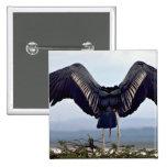 Cigüeña de Maribu con las alas outstretched Pin