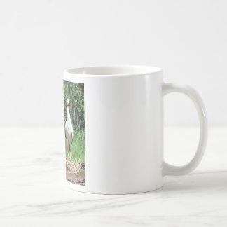 Cigüeña preciosa taza de café