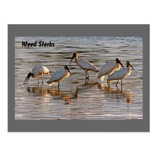 Cigüeñas de madera en la oscuridad tarjeta postal