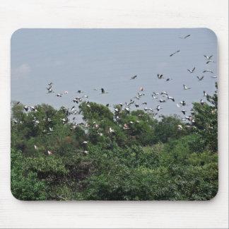 Cigüeñas Mousepad del vuelo Tapete De Ratón