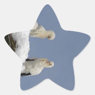 Cigüeñas Pegatina En Forma De Estrella