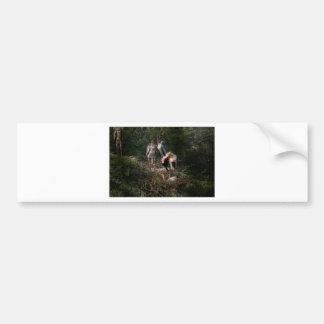 Cigüeñas pintadas en una jerarquía pegatina de parachoque