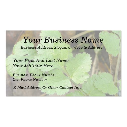 Cilantro Double-Sided Standard Business Cards (Pack Of 100)