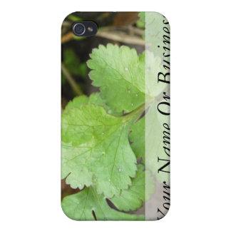 Cilantro iPhone 4 Covers