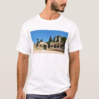 Cimiez Nice, France T-Shirt
