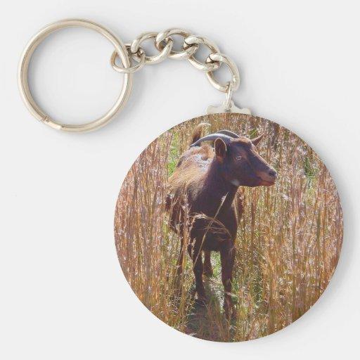 Cinammon la cabra llavero personalizado