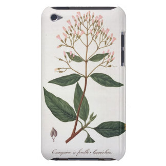 Cinchona from 'Phytographie Medicale' by Joseph Ro Case-Mate iPod Touch Case