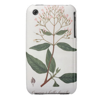 Cinchona from 'Phytographie Medicale' by Joseph Ro iPhone 3 Cover