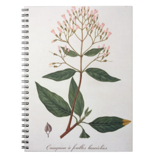 Cinchona from 'Phytographie Medicale' by Joseph Ro Spiral Notebook