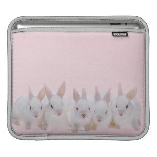Cinco conejos 2 funda para iPads