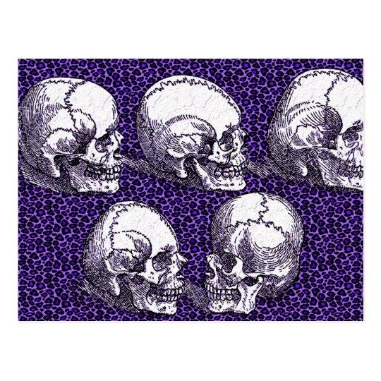 Cinco cráneos postales