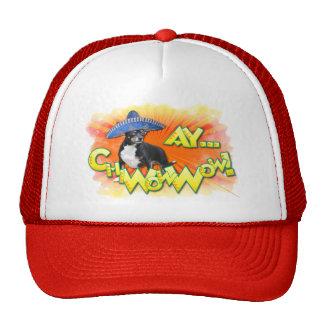 Cinco de Mayo - Ay ChWowWow! - Chihuahua Hats