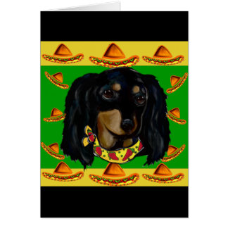 Cinco de Mayo Long Haired Black  Doxie Card