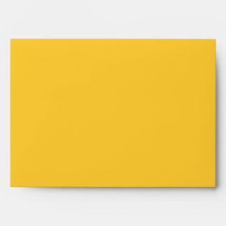 Cinco De Mayo Man Envelope