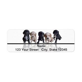 Cinco negros y perritos de cocker spaniel del more etiquetas de remite