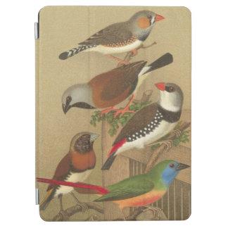 Cinco pájaros coloridos del mascota encaramados en cover de iPad air