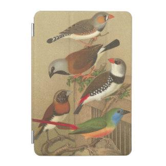 Cinco pájaros coloridos del mascota encaramados en cover de iPad mini
