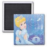 Cinderella Princess Magnets