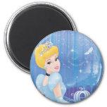 Cinderella Princess Refrigerator Magnets