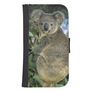 Cinereus de la koala, del Phascolarctos), en pelig Carteras Para Teléfono