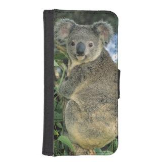 Cinereus de la koala, del Phascolarctos), en pelig Fundas Tipo Cartera Para iPhone 5