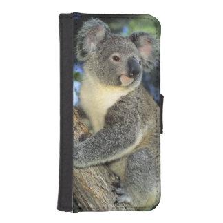 Cinereus de la koala, del Phascolarctos), Fundas Cartera De iPhone 5