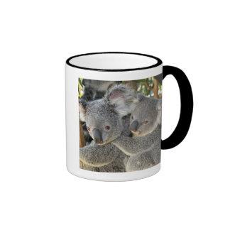 Cinereus Queensland del Phascolarctos de la koala. Taza De Dos Colores