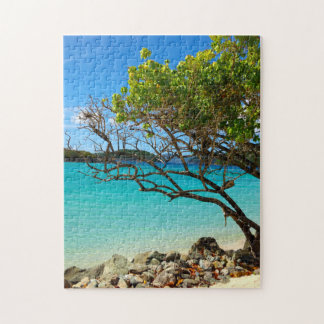 Cinnamon Bay St. John USVI Tropical Puzzle