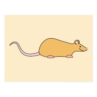 Cinnamon Color Pet Rat. Post Card