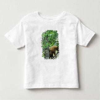 Cinnamon colored black bear in aspen tree in toddler t-shirt