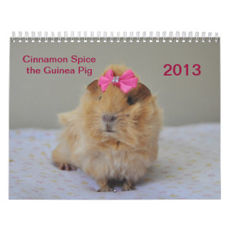 Cinnamon Spice 2013 Calender Calendar
