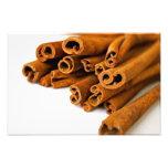 Cinnamon sticks photo art