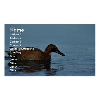 Cinnamon Teal Business Card