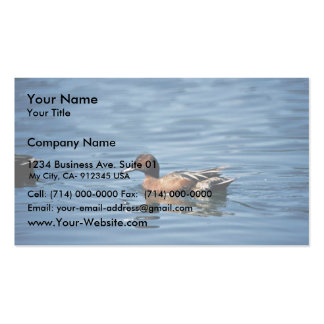 Cinnamon Teal Double-Sided Standard Business Cards (Pack Of 100)