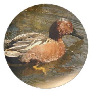 Cinnamon Teal Duck Plate
